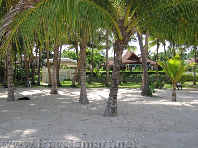 Alona Palm Beach Resort Room Rates